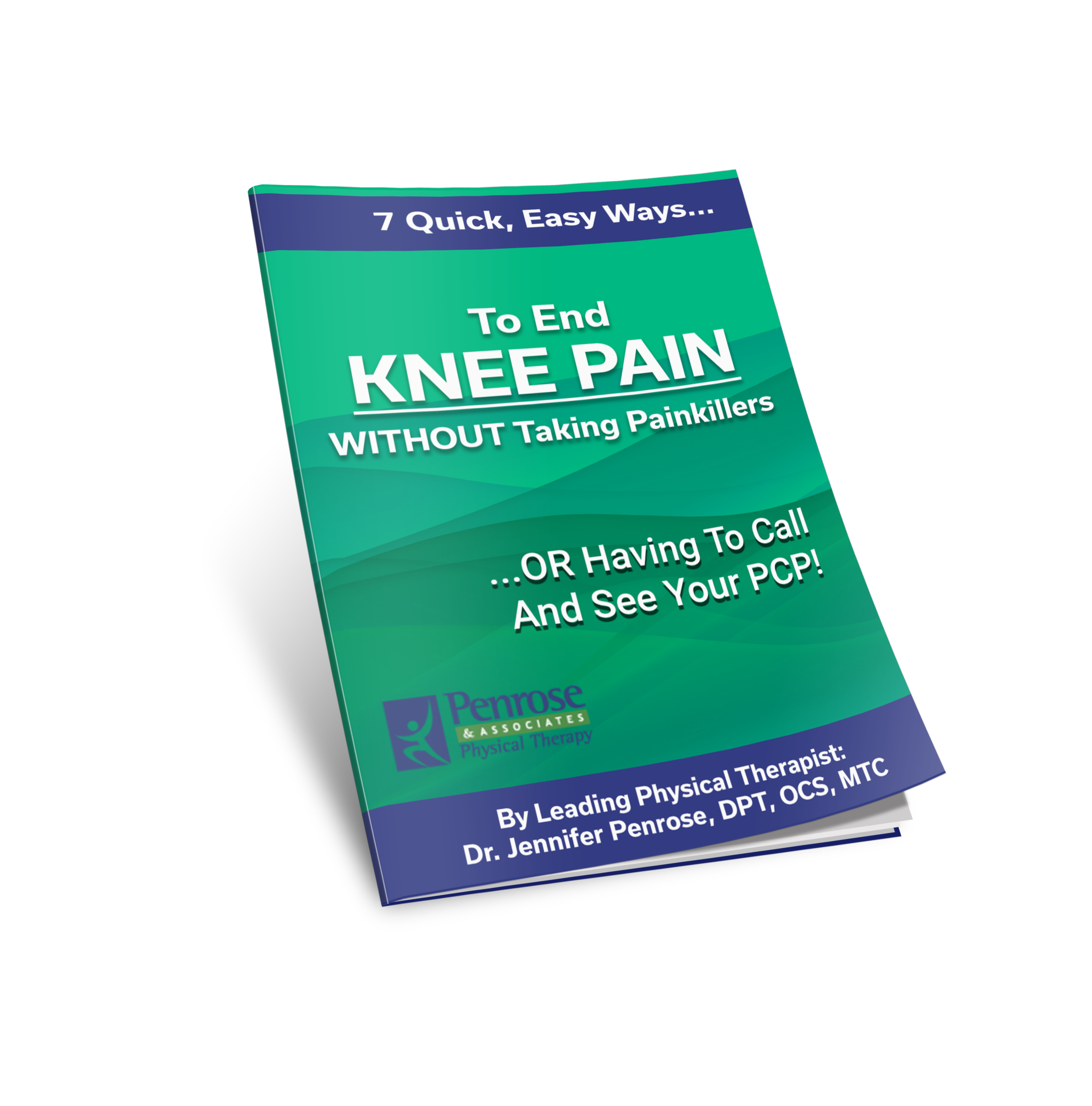 Knee Report Cover 3D